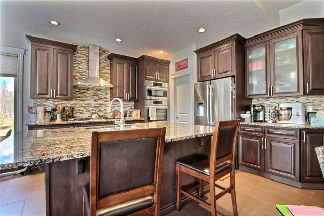 84 53305 RGE RD 273, Rural Parkland County, AB T7X 3N3 (#E4152476) :: Mozaic Realty Group