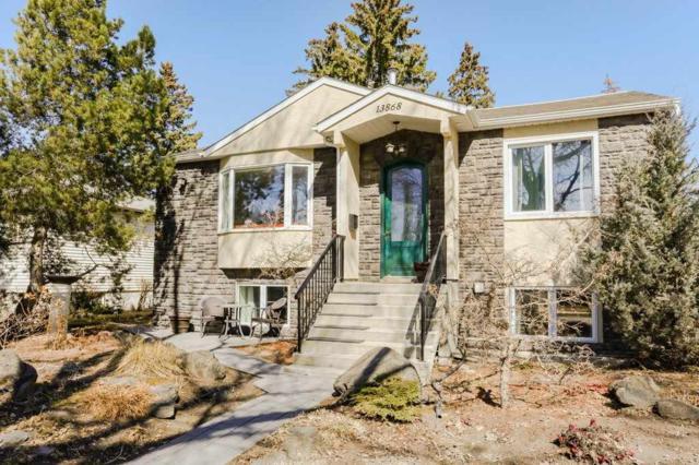 13868 110A Avenue, Edmonton, AB T5M 2M9 (#E4152519) :: Jenn McPhillamey   YEGPro Realty
