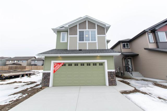 17323 74 Street, Edmonton, AB T5Z 0J8 (#E4152633) :: Müve Team | RE/MAX Elite
