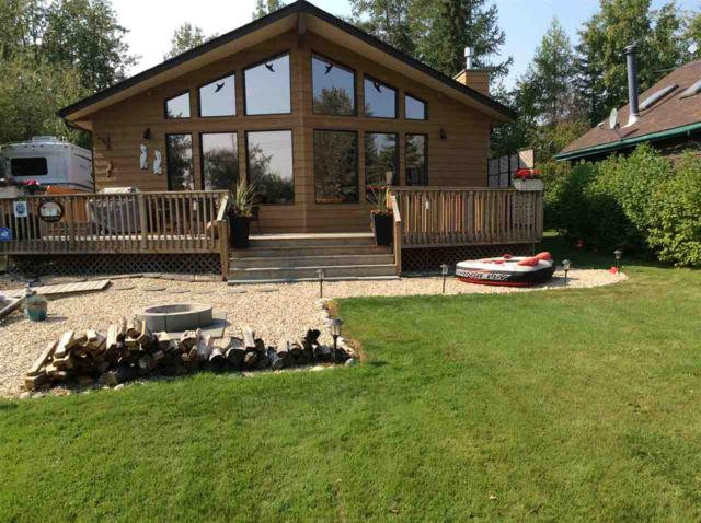 343 Crystal Springs Pigeon Lake, Rural Wetaskiwin County, AB T0C 2V0 (#E4153233) :: Mozaic Realty Group