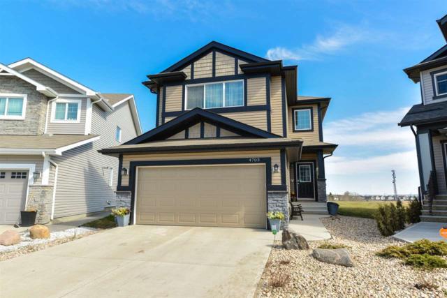 4703 171 Avenue, Edmonton, AB T5Y 3P5 (#E4153783) :: Mozaic Realty Group