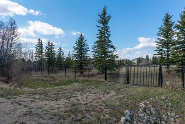 20504 5 Avenue, Edmonton, AB T6M 2P4 (#E4154082) :: The Foundry Real Estate Company