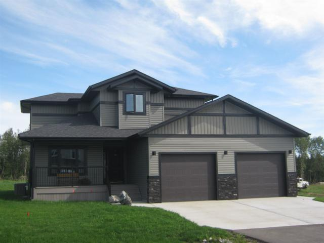 #206 River Ravine Estates, Rural Brazeau County, AB T7A 0B9 (#E4154133) :: Initia Real Estate
