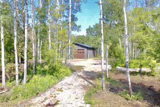 31, 25507 TWP RD 512 A, Rural Parkland County, AB T6E 3N4 (#E4154260) :: Mozaic Realty Group