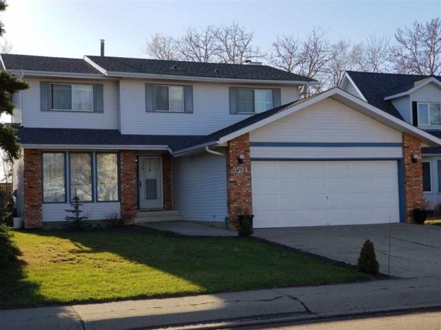 9524 190 Street, Edmonton, AB T5T 5K9 (#E4154493) :: Mozaic Realty Group