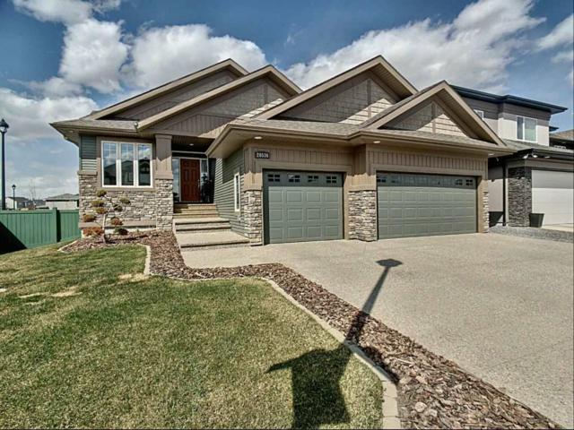20536 93 Avenue, Edmonton, AB T5T 4K6 (#E4154985) :: The Foundry Real Estate Company