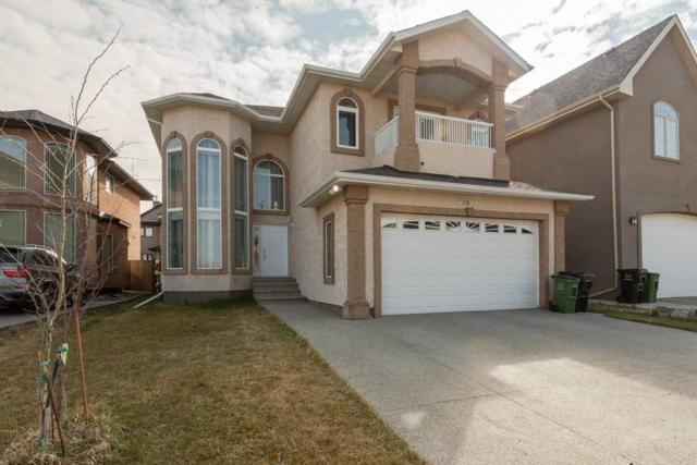 17519 110 Street, Edmonton, AB T5X 0B7 (#E4155865) :: Mozaic Realty Group