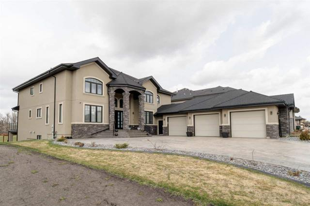352 52327 RGE RD 233, Rural Strathcona County, AB T8B 1C6 (#E4156144) :: David St. Jean Real Estate Group