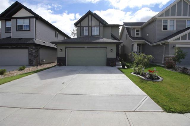 5635 175 Ave, Edmonton, AB T5T 0T5 (#E4156438) :: The Foundry Real Estate Company