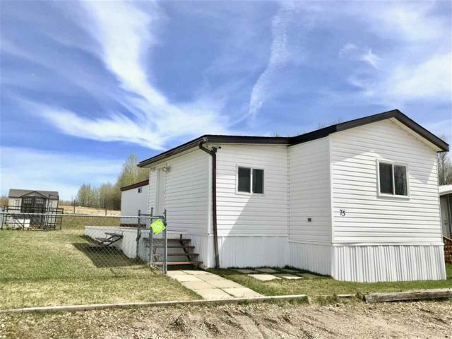 75 Pleasant View Mhp, Drayton Valley, AB T7A 1M8 (#E4156642) :: The Foundry Real Estate Company