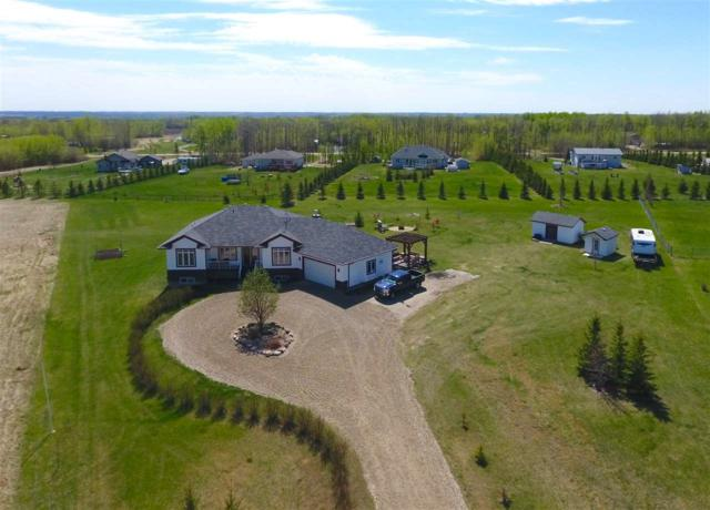 44 53522 RGE RD 272, Rural Parkland County, AB T7X 3N2 (#E4156710) :: David St. Jean Real Estate Group