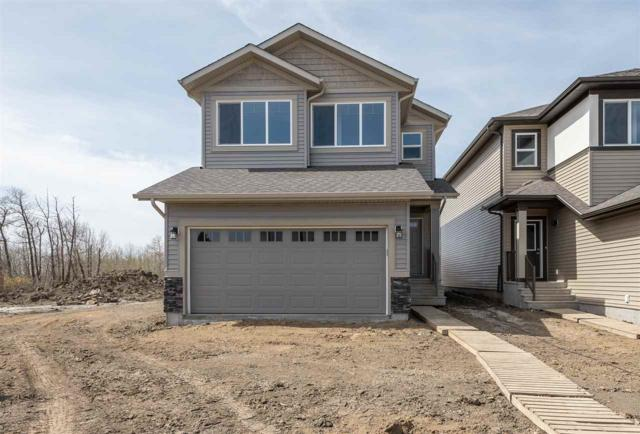 17516 124 Street, Edmonton, AB T5X 0L3 (#E4156821) :: The Foundry Real Estate Company