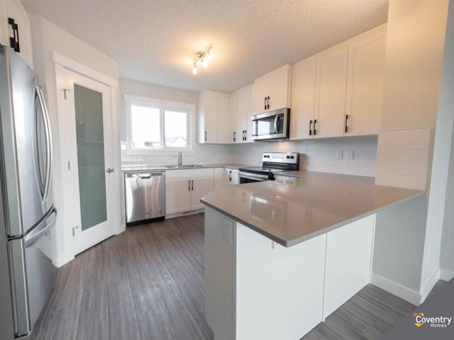 20118 27 Avenue, Edmonton, AB T6M 0W7 (#E4157039) :: David St. Jean Real Estate Group