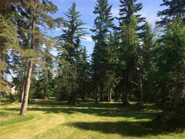 236 62002 Twp Rd 462A - Heritage Estates, Rural Wetaskiwin County, AB T0C 0T0 (#E4157302) :: The Foundry Real Estate Company