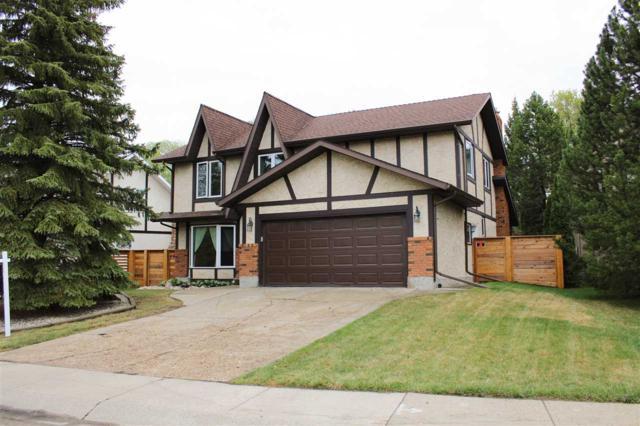 71 Wakina Drive, Edmonton, AB T5T 2X4 (#E4157410) :: Mozaic Realty Group