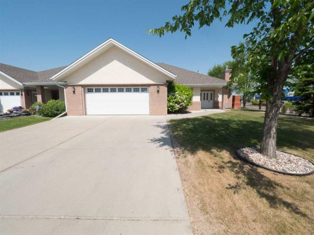 1 18343 Lessard Road, Edmonton, AB T6M 0A2 (#E4157424) :: Mozaic Realty Group