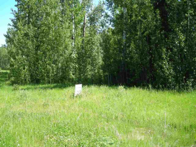 28 Village West Estates, Rural Wetaskiwin County, AB T0C 2V0 (#E4157604) :: Mozaic Realty Group