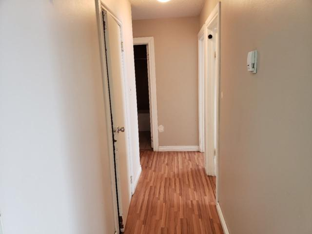 305 3720 118 Avenue, Edmonton, AB T5W 0Z6 (#E4157781) :: Mozaic Realty Group
