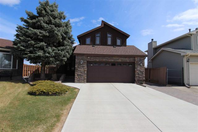 17223 93 Street, Edmonton, AB T5Z 2N4 (#E4157896) :: David St. Jean Real Estate Group