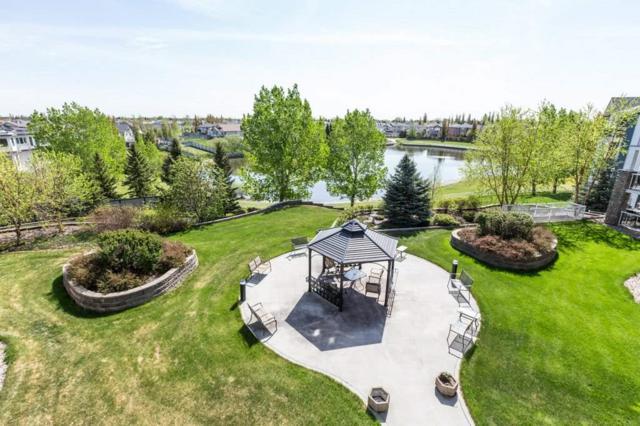 319 16035 132 Street, Edmonton, AB T6V 0B4 (#E4158346) :: Mozaic Realty Group