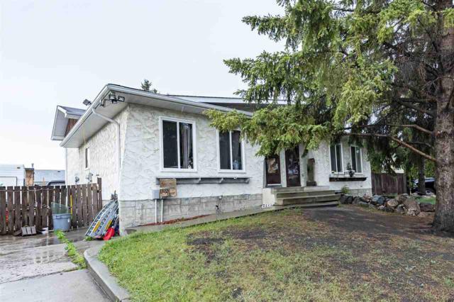 13224 38 Street, Edmonton, AB T5A 3G4 (#E4158533) :: David St. Jean Real Estate Group