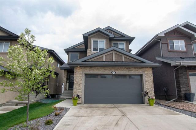 18092 89 Street, Edmonton, AB T5Z 0J5 (#E4158688) :: Mozaic Realty Group