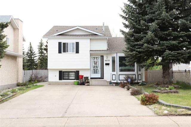 18733 70 Avenue, Edmonton, AB T5T 5C9 (#E4158690) :: Mozaic Realty Group