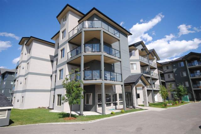 302 16235 51 Street, Edmonton, AB T5Y 0V3 (#E4158899) :: David St. Jean Real Estate Group