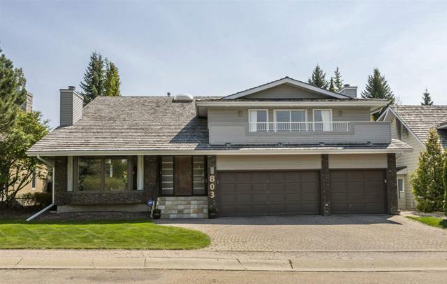 803 Romaniuk Place, Edmonton, AB T6R 1G3 (#E4159060) :: Mozaic Realty Group