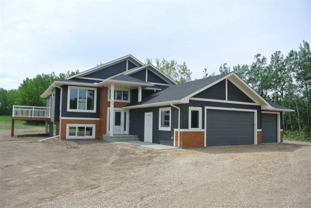 25 52510 Rge 213 Road, Rural Strathcona County, AB T8G 2E6 (#E4159938) :: Mozaic Realty Group