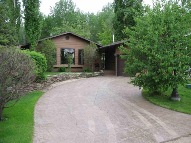 119 Crystal Springs, Pigeon Lake, Rural Wetaskiwin County, AB T0C 2V0 (#E4160201) :: Mozaic Realty Group