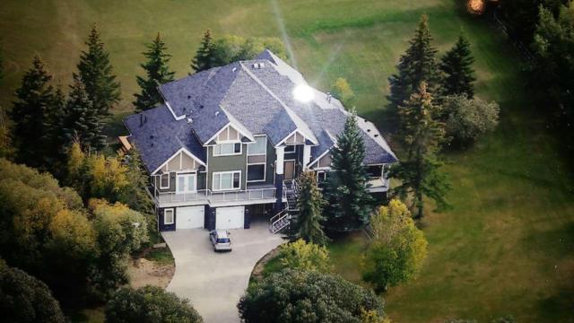 241 51247 Range Rd, Rural Strathcona County, AB T8B 1K7 (#E4160289) :: Mozaic Realty Group