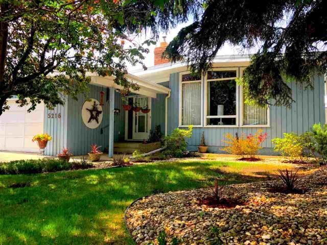 5216 142 Street NW, Edmonton, AB T6H 4B4 (#E4160321) :: Mozaic Realty Group