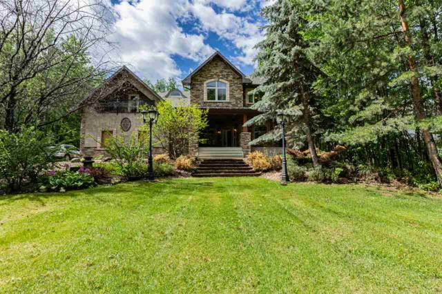 81 Crystal Springs Drive, Rural Wetaskiwin County, AB T0C 2V0 (#E4160408) :: Mozaic Realty Group