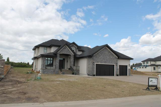 420 52320 RGE RD 231, Rural Strathcona County, AB T8B 1A9 (#E4160649) :: Mozaic Realty Group