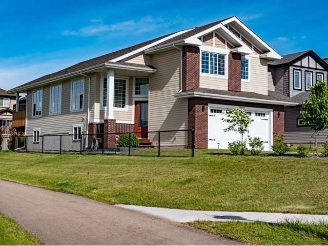 16404 133 Street, Edmonton, AB T6V 0J6 (#E4160762) :: Mozaic Realty Group