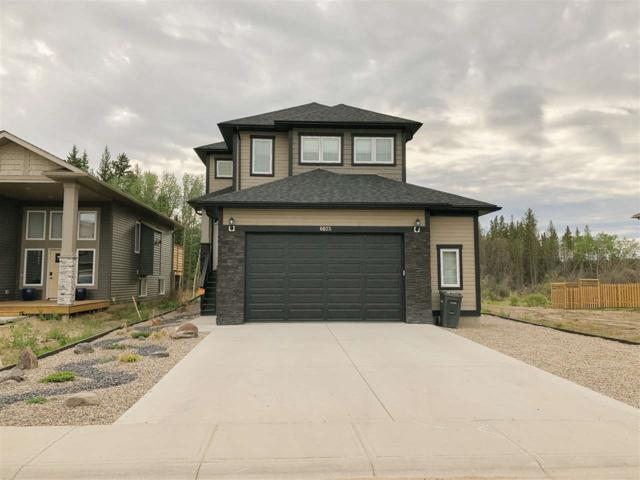 6603 Tri-City Way, Cold Lake, AB T9M 0J2 (#E4161169) :: Initia Real Estate
