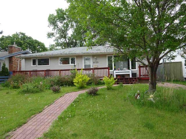 9735 164  Street, Edmonton, AB T5P 3R1 (#E4161201) :: David St. Jean Real Estate Group