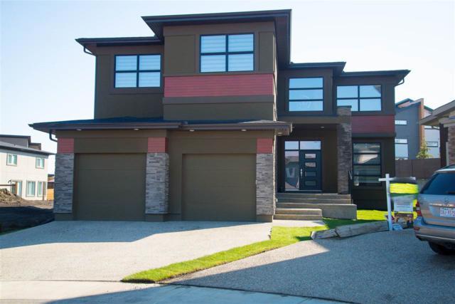 1047 Walkowski Place NW, Edmonton, AB T6W 3G7 (#E4161237) :: Mozaic Realty Group