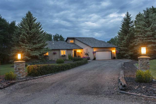 18107 7 Avenue, Edmonton, AB T6W 1A5 (#E4161769) :: Mozaic Realty Group