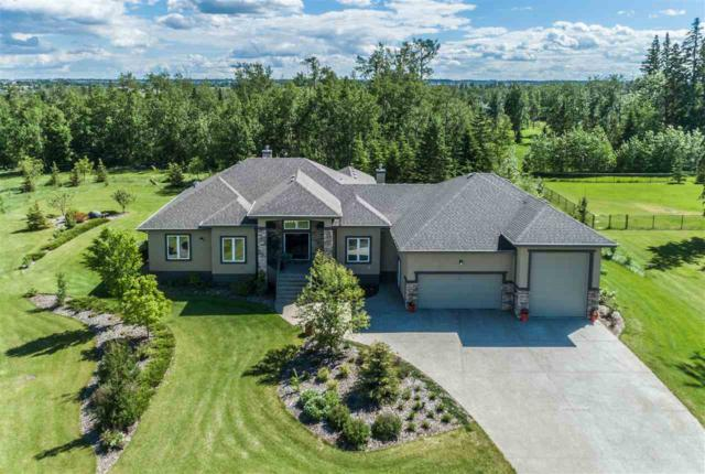 61 53305 RGE RD 273, Rural Parkland County, AB T7X 3N3 (#E4161827) :: David St. Jean Real Estate Group