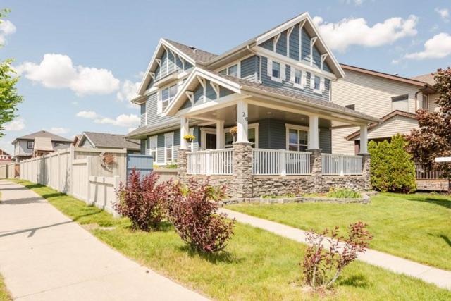 216 57 Street, Edmonton, AB T6X 0K9 (#E4162234) :: David St. Jean Real Estate Group