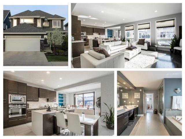 957 Summerside Link, Edmonton, AB T6X 0J9 (#E4162238) :: David St. Jean Real Estate Group