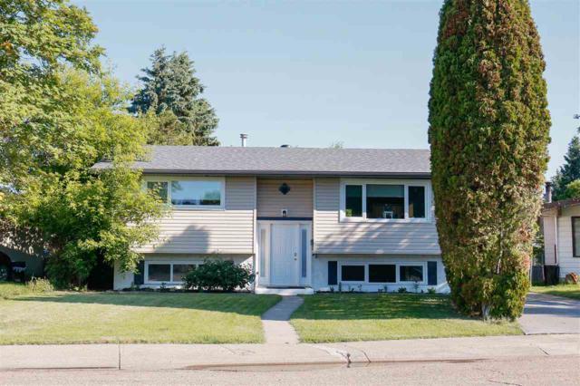 166 Homestead Crescent, Edmonton, AB T5A 2Y4 (#E4162365) :: David St. Jean Real Estate Group