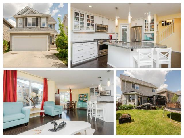 1303 72 Street, Edmonton, AB T6X 0H2 (#E4162499) :: David St. Jean Real Estate Group