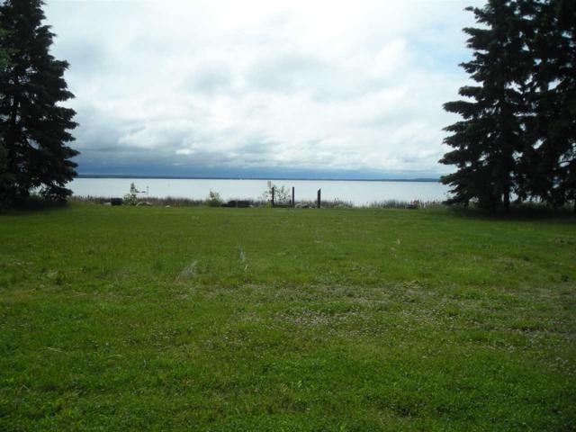 102 Argentia Beach, Rural Wetaskiwin County, AB T0C 2C0 (#E4162582) :: Initia Real Estate
