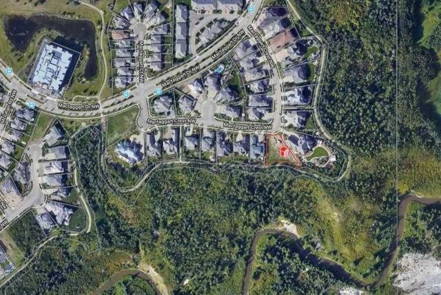 4824 Mactaggart Crest, Edmonton, AB T6R 0J7 (#E4162670) :: David St. Jean Real Estate Group