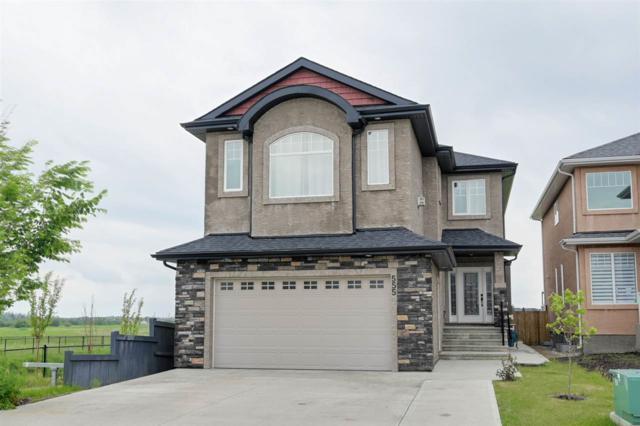 555 Albany Way, Edmonton, AB T6V 0H9 (#E4162846) :: David St. Jean Real Estate Group