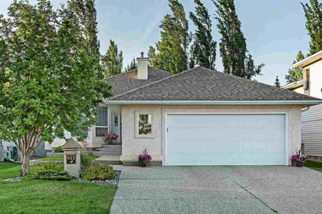 822 Proctor Wynd, Edmonton, AB T5T 6J3 (#E4163043) :: David St. Jean Real Estate Group