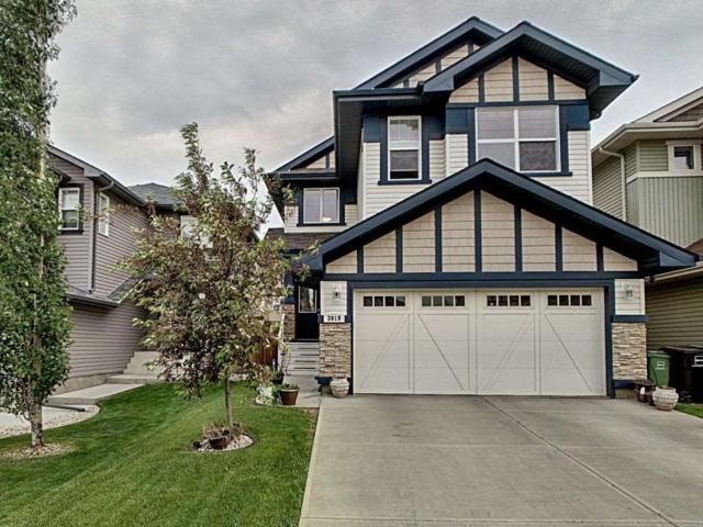 3919 166 Avenue, Edmonton, AB T5Y 0N9 (#E4163110) :: The Foundry Real Estate Company
